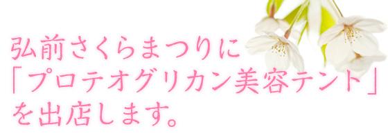 弘前さくら祭りにて<br />「プロテオグリカン美容テント」を出店しています